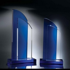 "11"" Double Take Crystal Award"