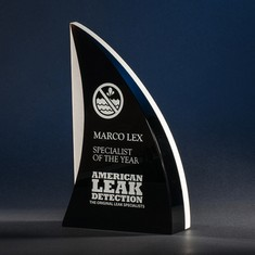 "9"" Shark'sFin Crystal & Stone Award"